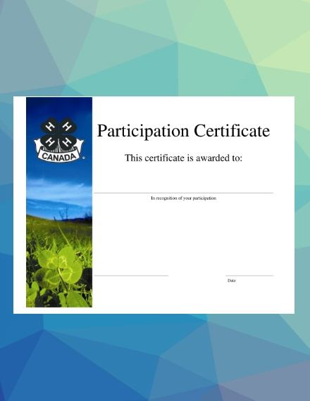 basic blank participation certificate