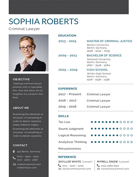 Basic Criminal Lawyer Resume Template