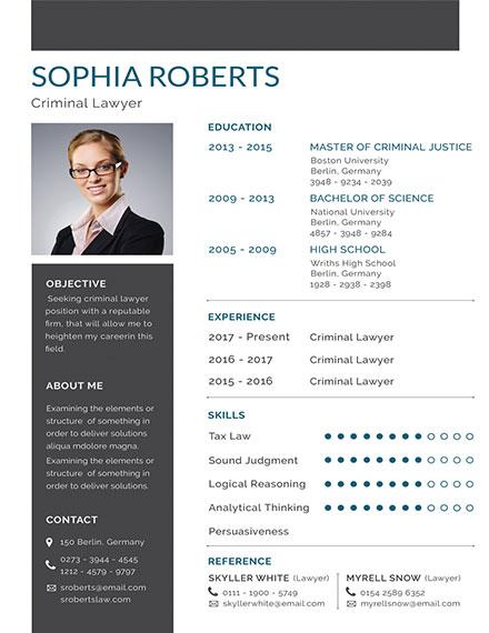 basic criminal lawyer resume template