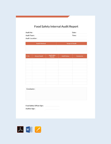 16+ Audit Report Examples - PDF, Docs, Pages | Examples