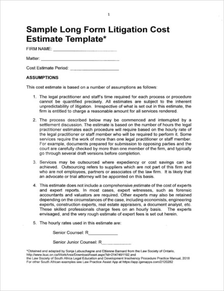 long form litigation cost estimate example1