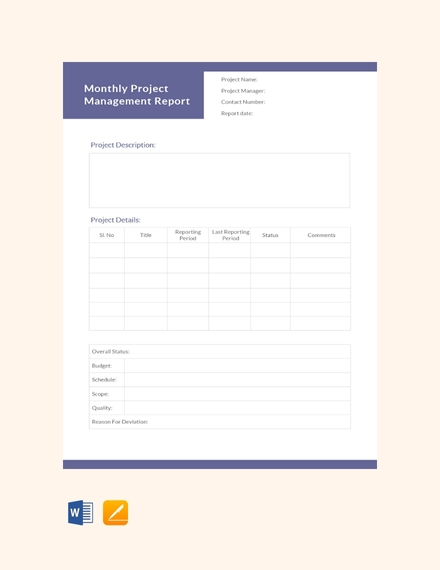 monthly project management report