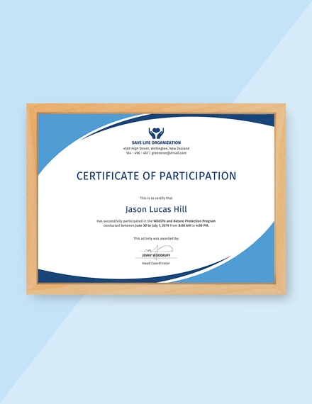 program participation certificate
