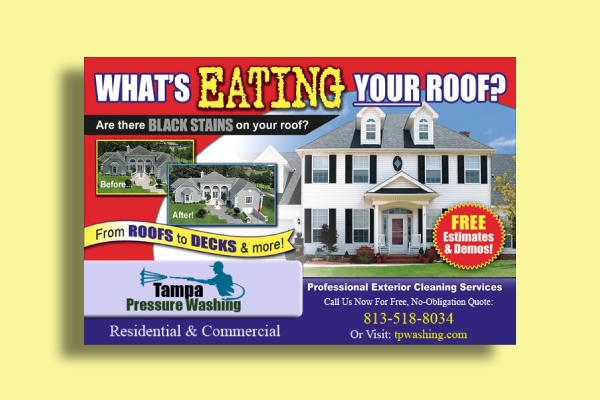 roof cleaning services flyer