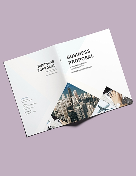 travel business proposal template