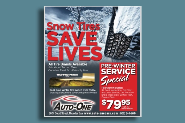 winter car service flyer