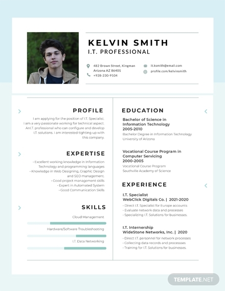 free it professional experience resume design