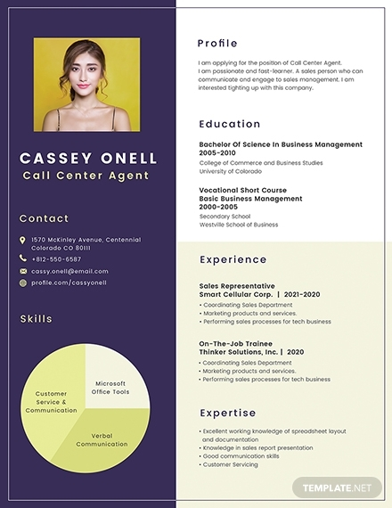 no experience call center resume template