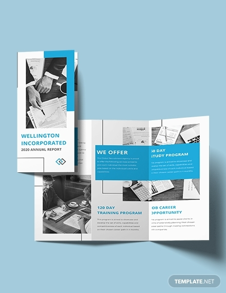 annual report trifold brochure
