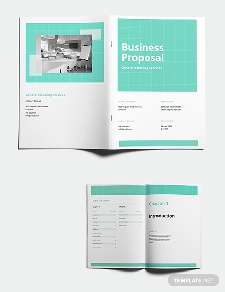 cleaning business proposal1