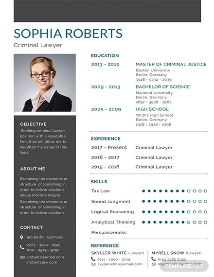 criminal lawyer resume template