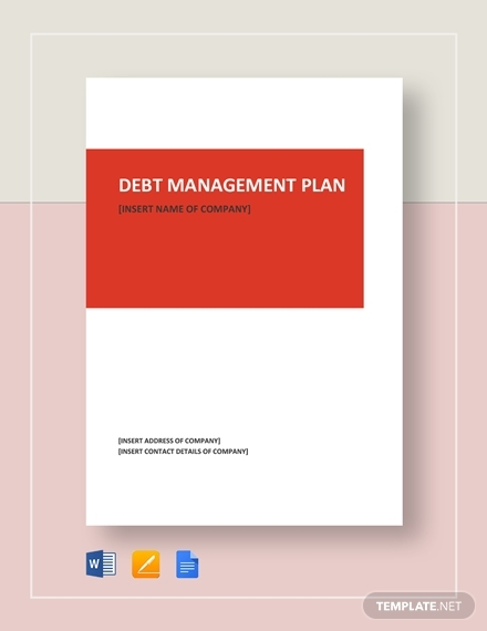 debt management plan sample