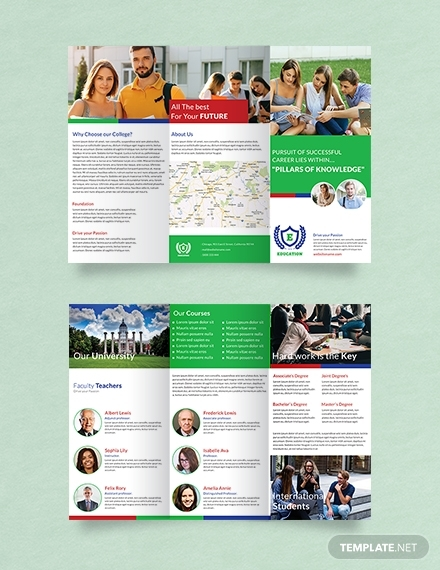 education a3 tri fold brochure