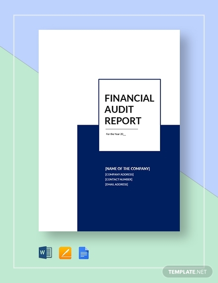 financial audit report