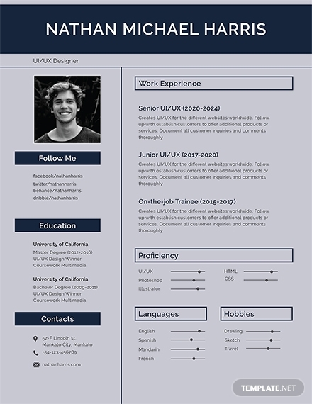 free modern resume sample