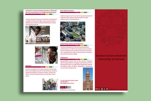 harvard summer program brochure