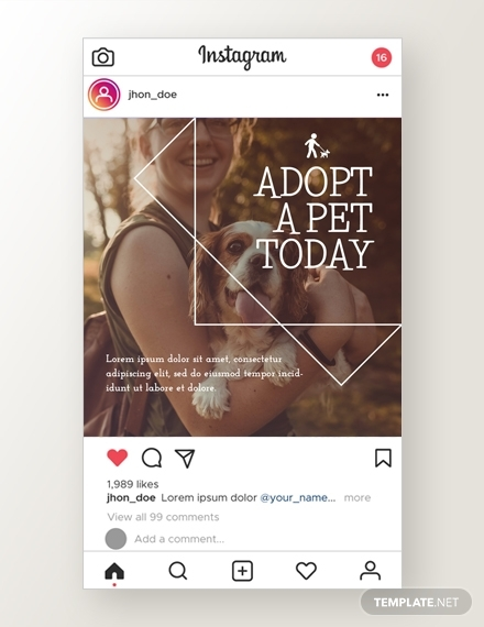pets instagram ad
