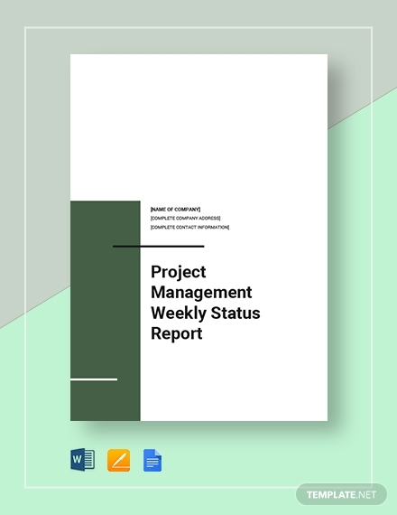project management weekly status report