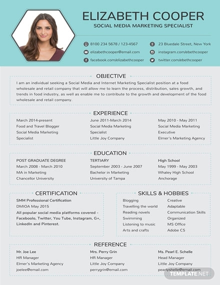 19  resume templates  u0026 examples in indesign