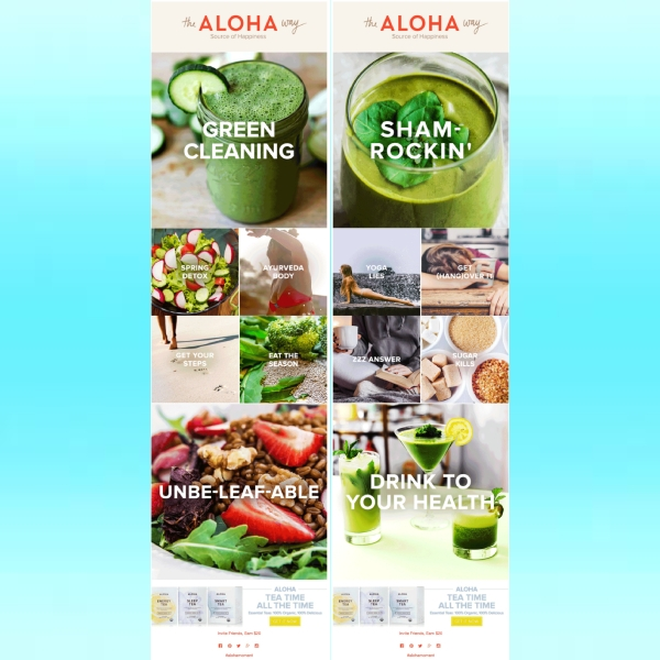 aloha email newsletter1