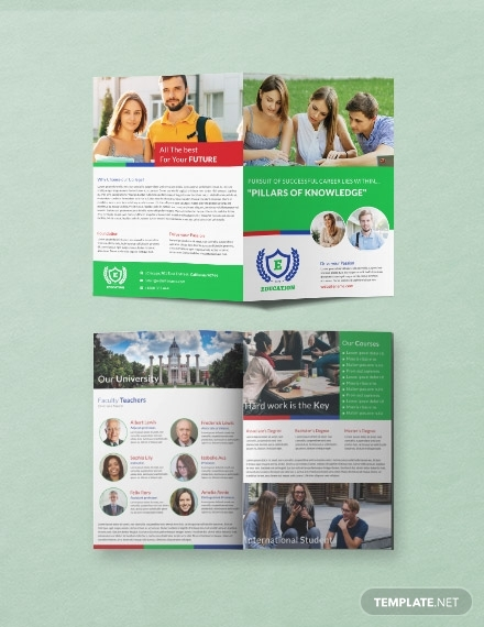 free education a3 bi fold brochure