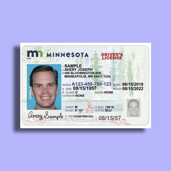 minnesota drivers license card