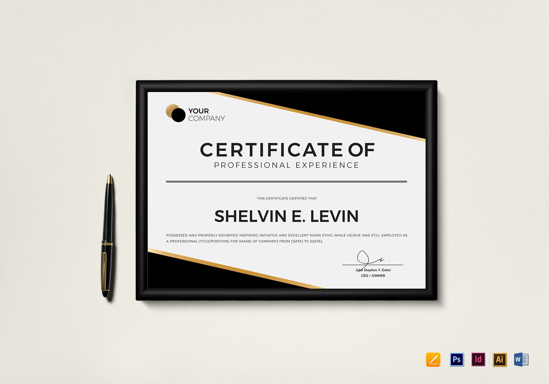 professional experience certificate template