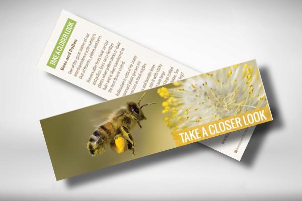 eco education bookmark