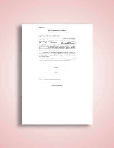 generic special power of attorney