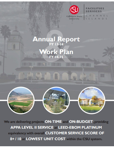 annual report work plan