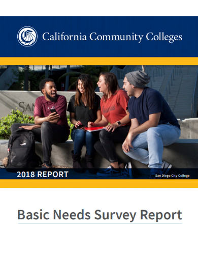 basic needs survey report