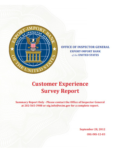 customer experience survey report