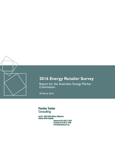 energy retailer survey