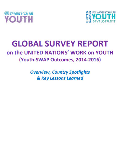 global survey report