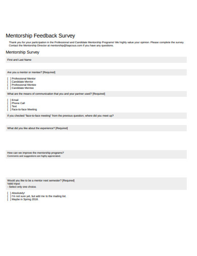 mentorship feedback survey