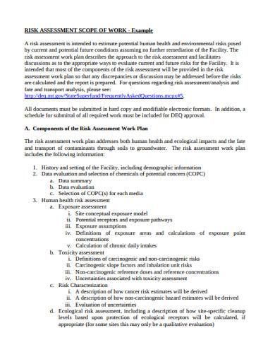 risk assessment scope of work