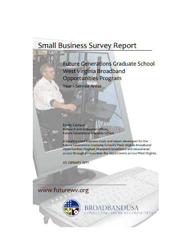 small business survey report