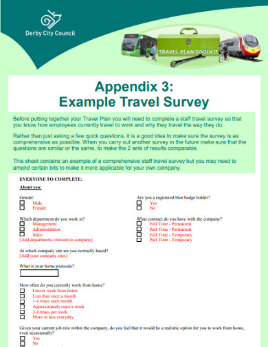 travel survey example
