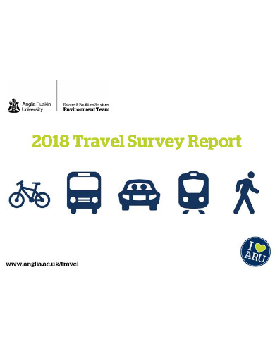 travel survey report