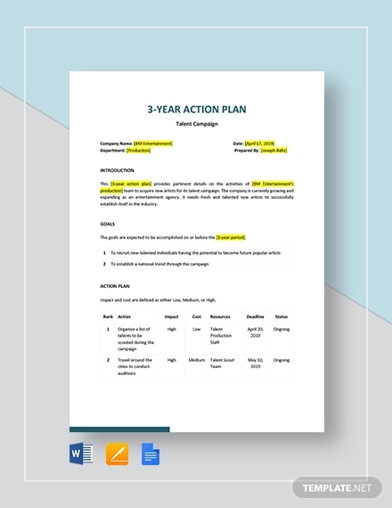 3 year action plan template