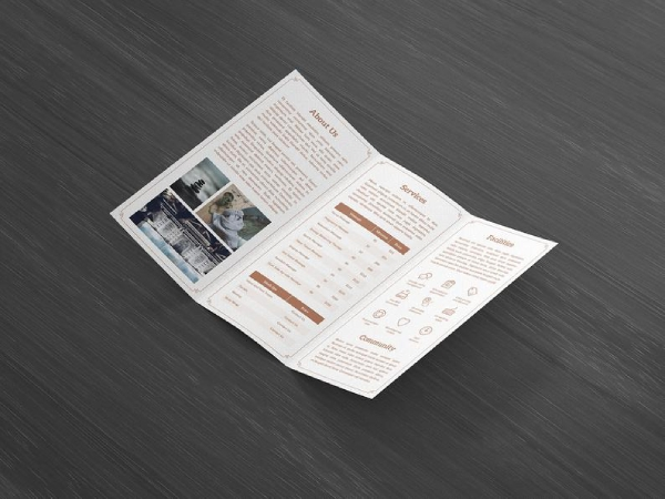 aesthetix trifold brochure indesign template