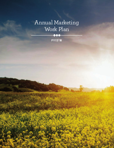 annual marketing work plan