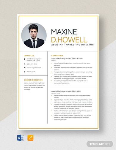 assistant marketing director resume template