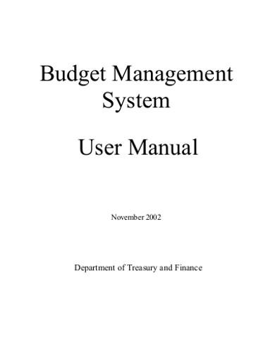 budget management system