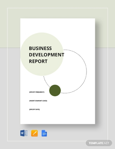 business development report