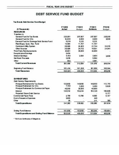 debt service fund budget