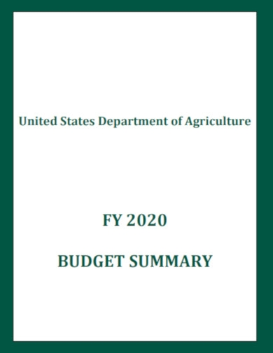 department of agriculture budget summary