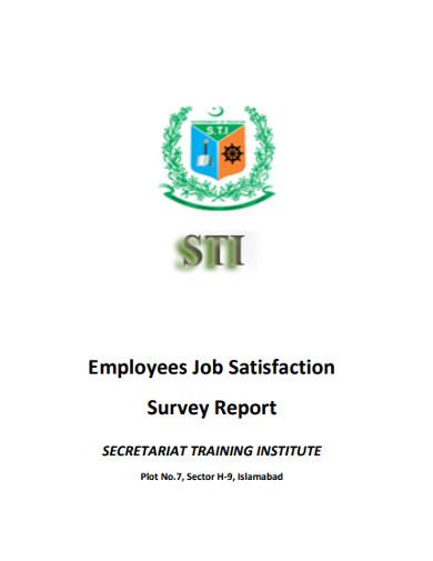 employees job satisfaction survey report