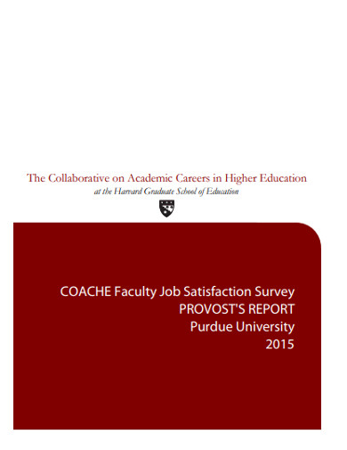 faculty job satisfaction survey