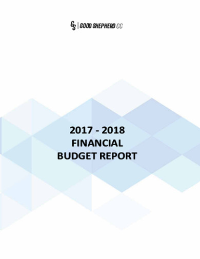 financial budget report